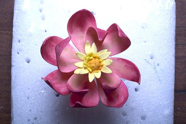 small blossom